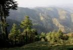 Chail Himachal Pradesh