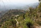 Photo Tour of Luturu Mahadev Temple (Arki, HP)